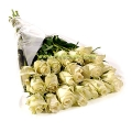 A 20 Long Stem White  Ecuadorian Roses