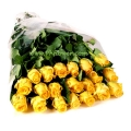 20 Long Stem Yellow Roses Gift Wrap