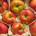 Honeycrisp Apple Gift Box