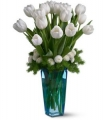 Winter White Tulips