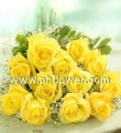 One Dozen Yellow Rose
